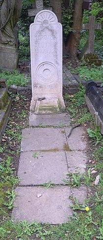 Hercules Bellville Grave.jpg