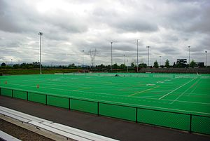 Hillsboro Stadium - Playing surface at the stadium
