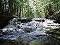 Hogger Falls - panoramio.jpg