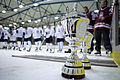 Hokeja spēle Saeima pret Zemnieku Saeimu (5743986465).jpg