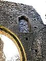 Hore Abbey, Caiseal, Éire - 45671503835.jpg