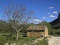 Horta de San Juan - shed.jpg