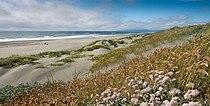 Humboldt bay national wildlife refuge 2.jpg