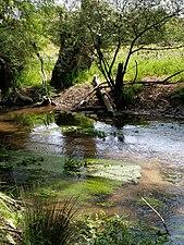 IMG 20180509 123004, Río Aulencia, curso medio del río Guadarrama.jpg