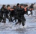 IRGC naval execise-2015 (11) (cropped).jpg