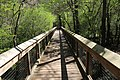 Ichetucknee Springs State Park Blue Hole Trail pedestrian bridge.jpg