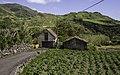 Ilha das Flores P5270250 (35839640942).jpg