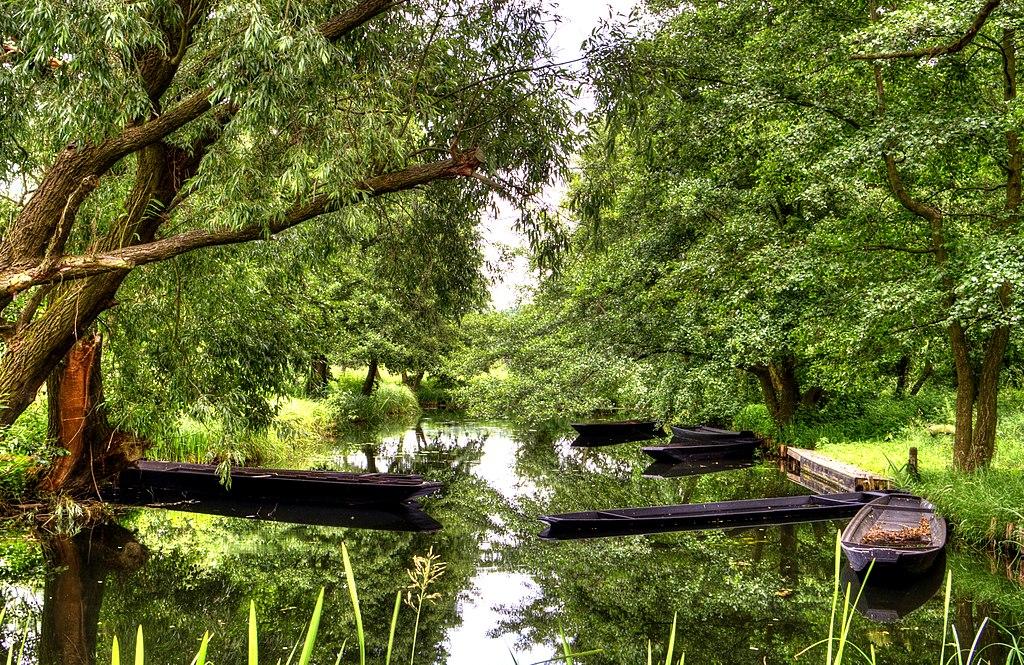 Boote im Spreewald (UNESCO-Biosphärenreservat und ehemaliger Kandidat für das Welterbe)
