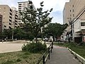 Imaizumi Park 20180511.jpg