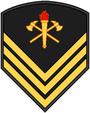Insignia BM P4.PNG