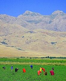 "Iraqi Kurdish villagers in field near Turkish <a style=""color:blue"" href=""https://www.lahistoriaconmapas.com/timelines/countries/timeline-chronology-Border.html"">Border</a>"