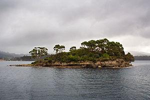 Isle of the Dead (Tasmania) - Isle of the Dead