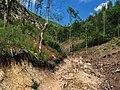 Ispod Kika ka Zaovinama - panoramio.jpg