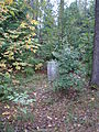 Janów, cmentarz żydowski 05.JPG