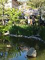 Jardín Japonés de Montevideo 11.JPG
