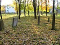 Jewish cemetery in Leżajsk (Poland)5.jpg