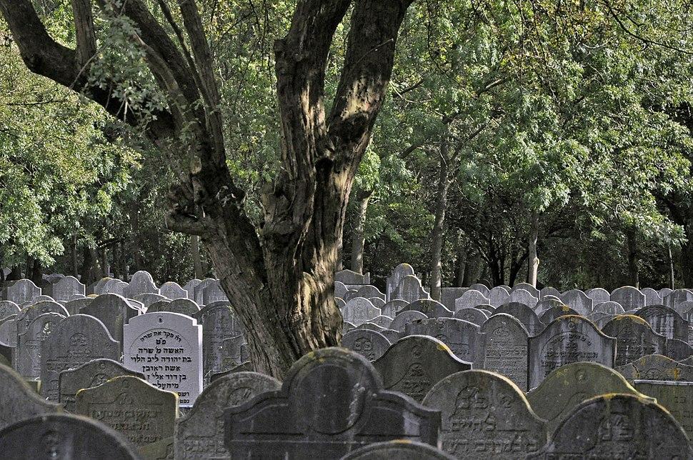 Joodse Begraafplaats Diemen, Veld A-7