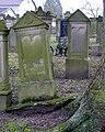 Juedischer Friedhof Mingolsheim 31 Wurzelheber fcm.jpg