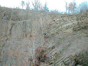 Alleghanian orogeny - Major fault at the dividing line between the Allegheny Plateau and the true Appalachian Mountains (Williamsport, Pennsylvania).