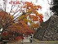 Kaiko-En - panoramio - Koichi Shibata.jpg