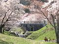 Kamagatani01.jpg