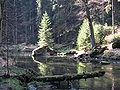 Kamenice bei Dolsky Mlyn.jpg