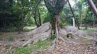 Kenting National Park - Cinnamon Lin - 005.jpg