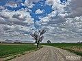 Kerman Province countryside - panoramio (127).jpg