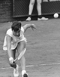 1976 Federation Cup (tennis)
