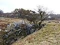 Kimigahatacho, Higashiomi, Shiga Prefecture 527-0202, Japan - panoramio (37).jpg