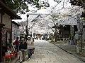 Kimiidera, Wakayama - panoramio.jpg