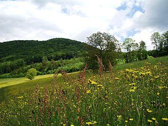 Randen (mountain range) - Image: Klettgau Siblingen