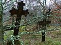 Kluki, cmentarz słowiński, ob. komunalny, pocz. XIX 03.jpg
