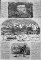 L'Illustration - 1858 - 085.png