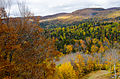 L'automne au Québec (8072463190).jpg