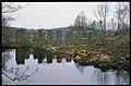 Långsjönäs pappersbruk - KMB - 16001000059284.jpg