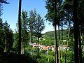 LSG 378517, Stadt Kassel, Quelberg, 2, Wolfsanger-Hasenhecke, Kassel.jpg