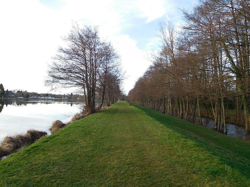 Chemin boisé au bord de l'étang, La Chapelle-d'Angillon (Cher, France). La Petite Sauldre (rivière) est visible à droite. Le camping (non visible) est situé à droite. Le tour de l'étang fait deux kilomètres.