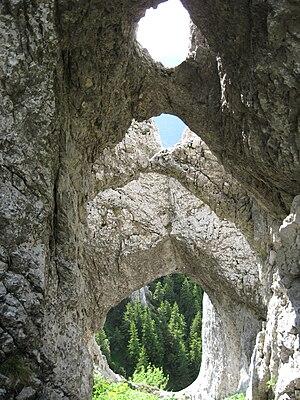 Piatra Craiului Mountains - La Zaplaz carstic shapes