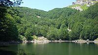 Lago Scuro Parmense 1.jpg