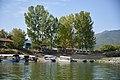 Lake Kerkini C.jpg