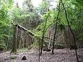 Landschaftsschutzgebiet Horstmanns Holz Melle -Umgestürzter Baum- Datei 6.jpg