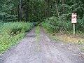 Leśny trakt - panoramio.jpg
