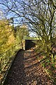 Le long du mur en pierres brunes (22783342936).jpg