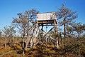 Leivonmäen kansallispuisto - näkötorni.jpg