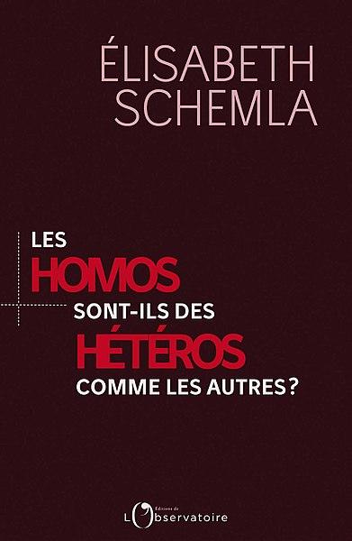 File:Les Homos sont-ils des Hétéros comme les autres ?.jpg