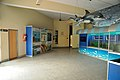 Life Science Gallery - Bardhaman Science Centre - Bardhaman 2015-07-24 1308.JPG