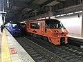 "Limited Express ""Sonic"" & ""Huis Ten Bosch"" at Hakata Station.jpg"