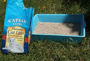 A basic litter box and a bag of litter