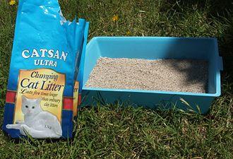 Litter box - A bag of litter and a basic litter box